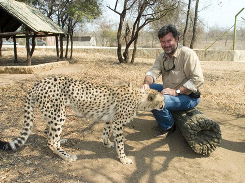 De-Wildt-Cheetah-Research-Project6