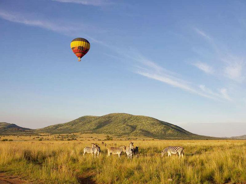 Pilanesberg-Nature-Reserve-tour1