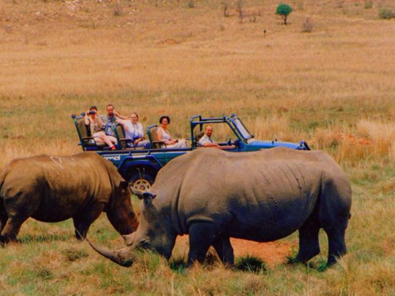 Rhino-Park-Tours3
