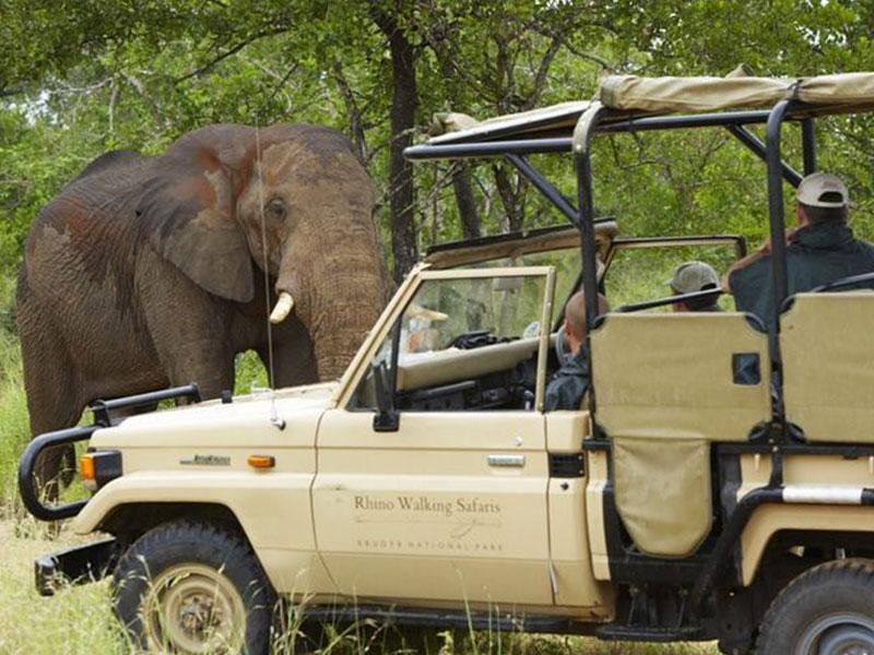 The-Kruger-National-Park11