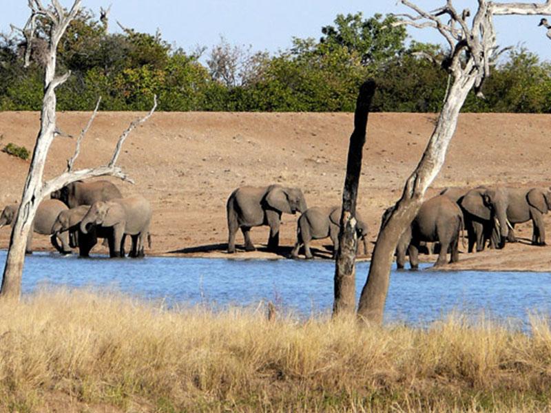The-Kruger-National-Park8